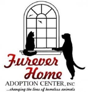 Furever Home - Community